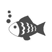 icon_pescuit